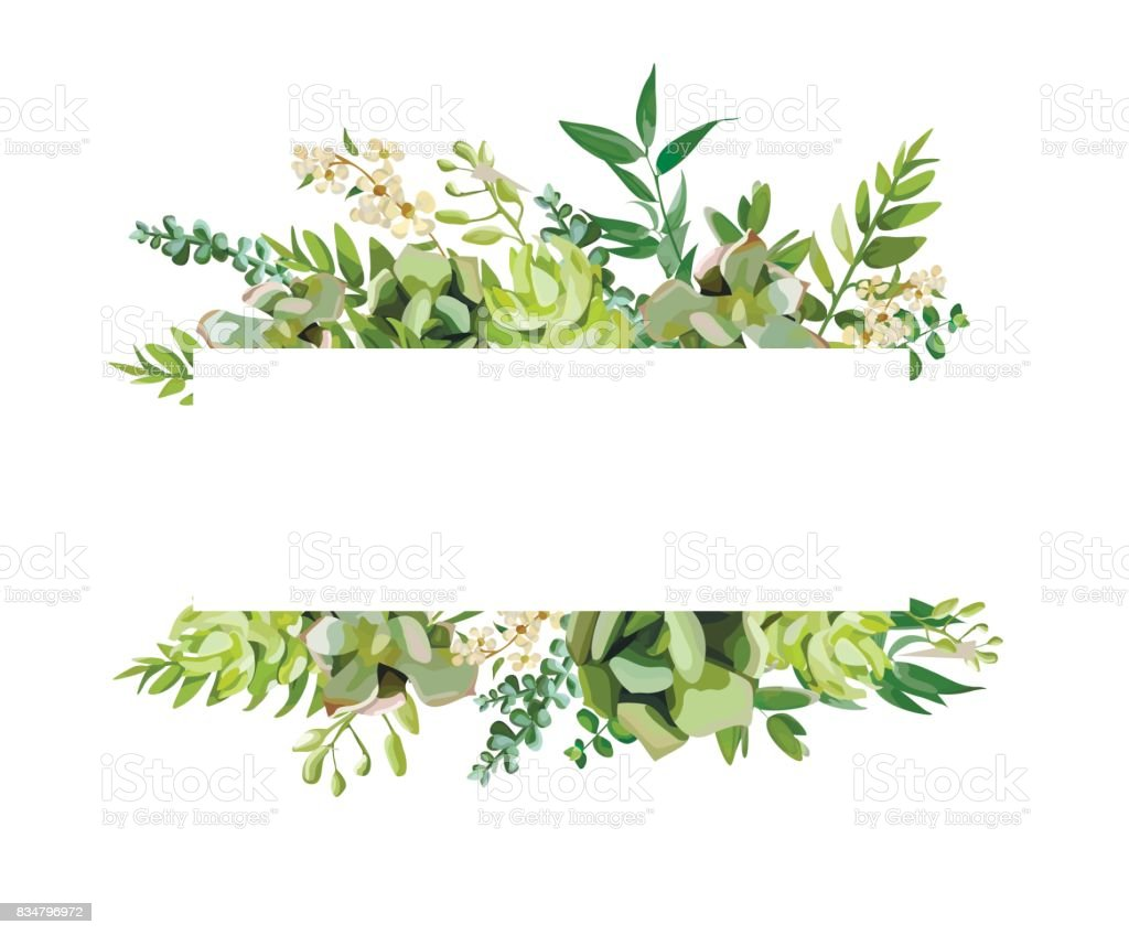 Best Lush Foliage Illustrations, Royalty-Free Vector