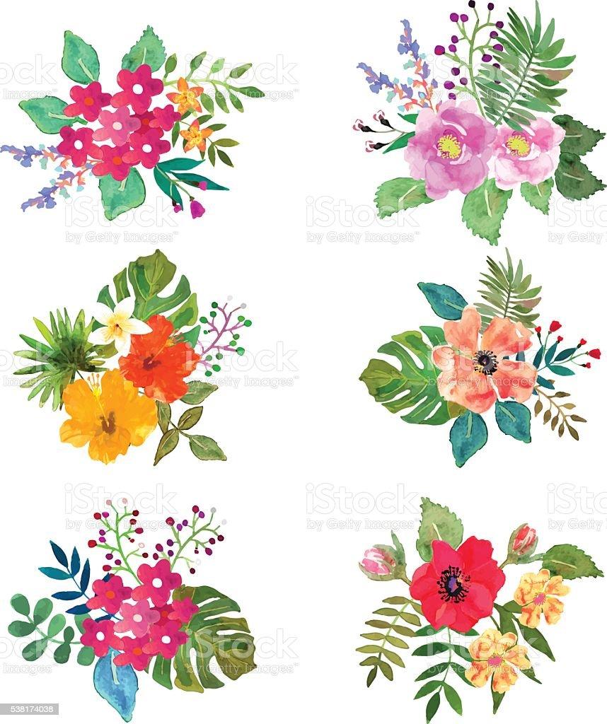 vector flowers set floral