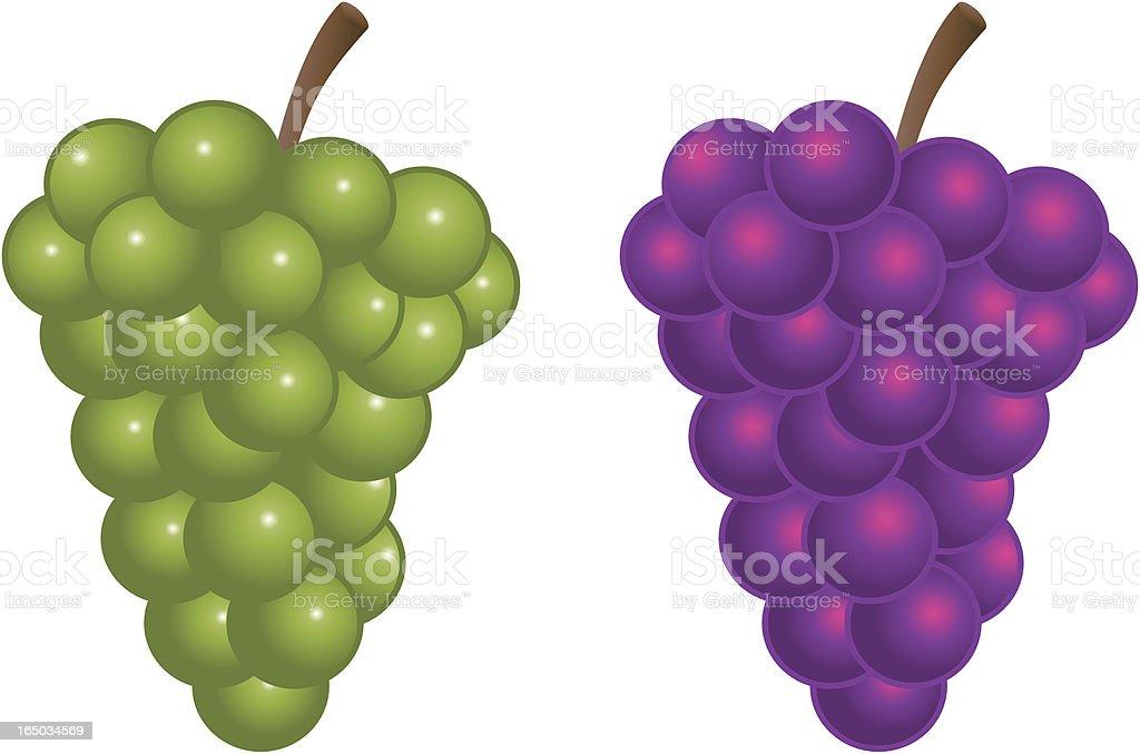 grape clip art vector &