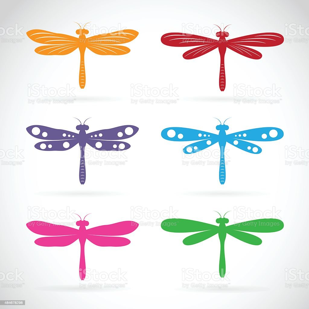 royalty free dragonfly clip art