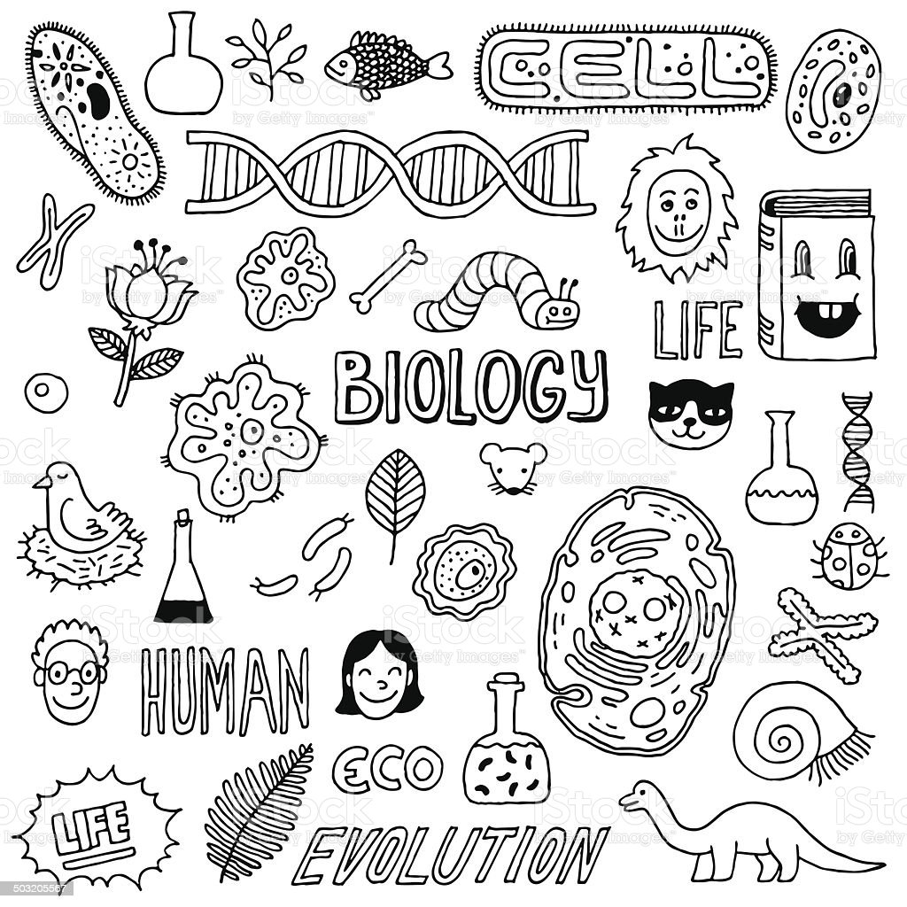 Vector Handdrawn Images Biology Icons Stock Vector Art