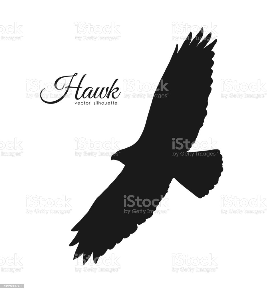 vector illustration silhouette of