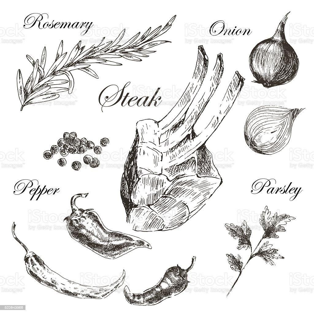 Vector Meat Steak Sketch Drawing Designer Template Food