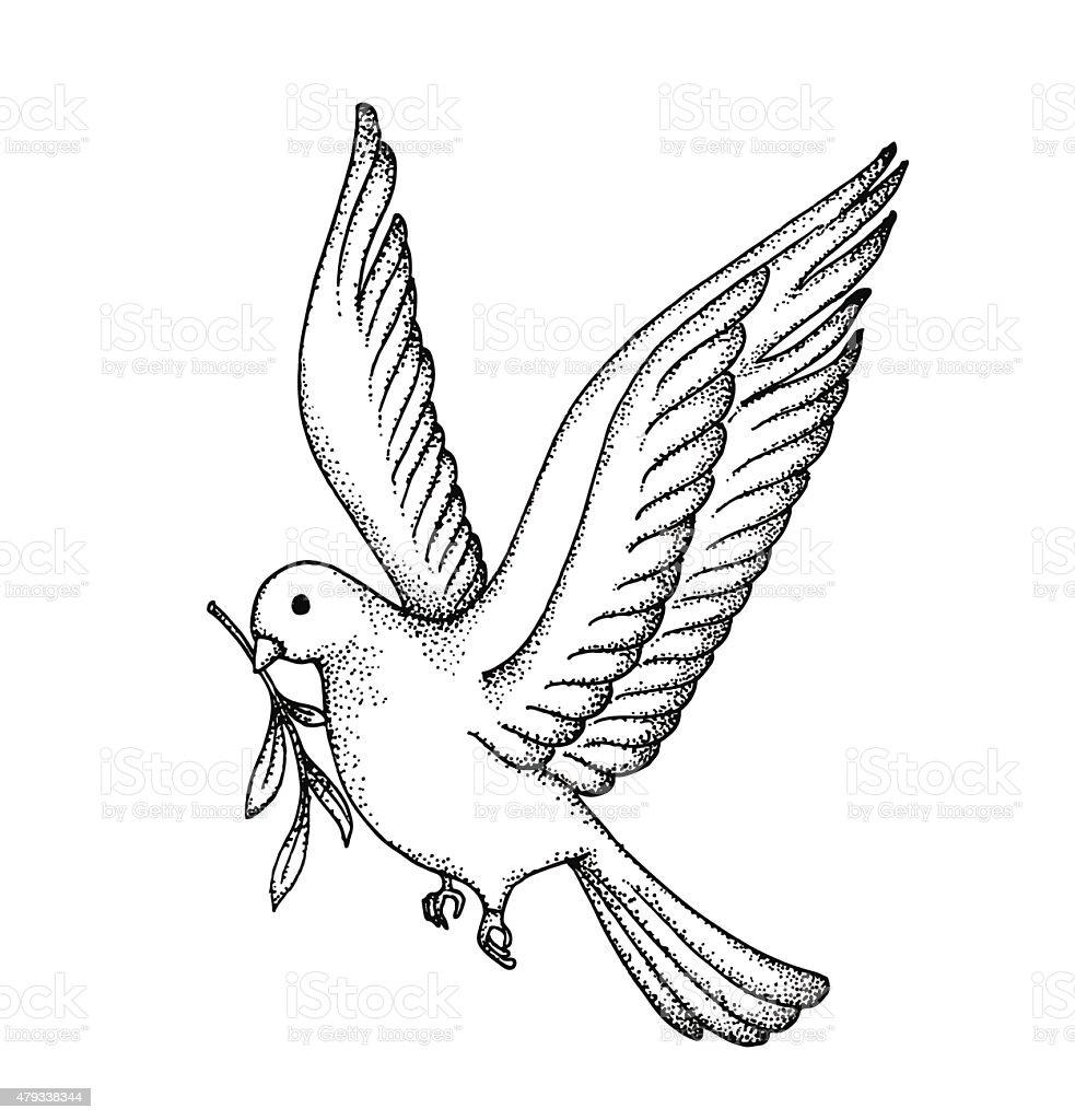 Cardinal Bird Stencils Outlines. Diagrams. Wiring Diagram