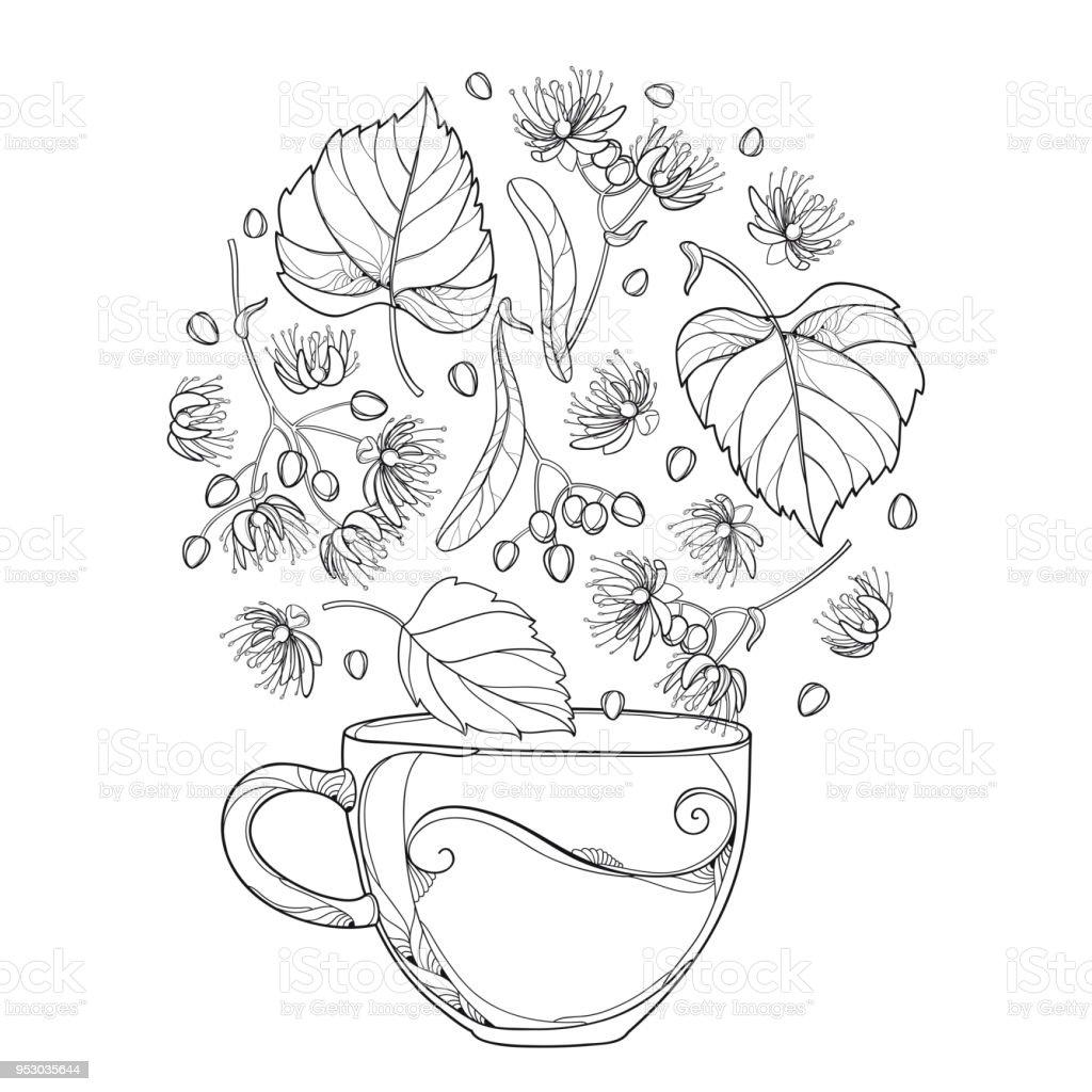 royalty free linden blossom tea