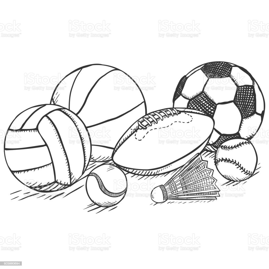 Vector Sketch Sport Set Pile Of Different Balls And