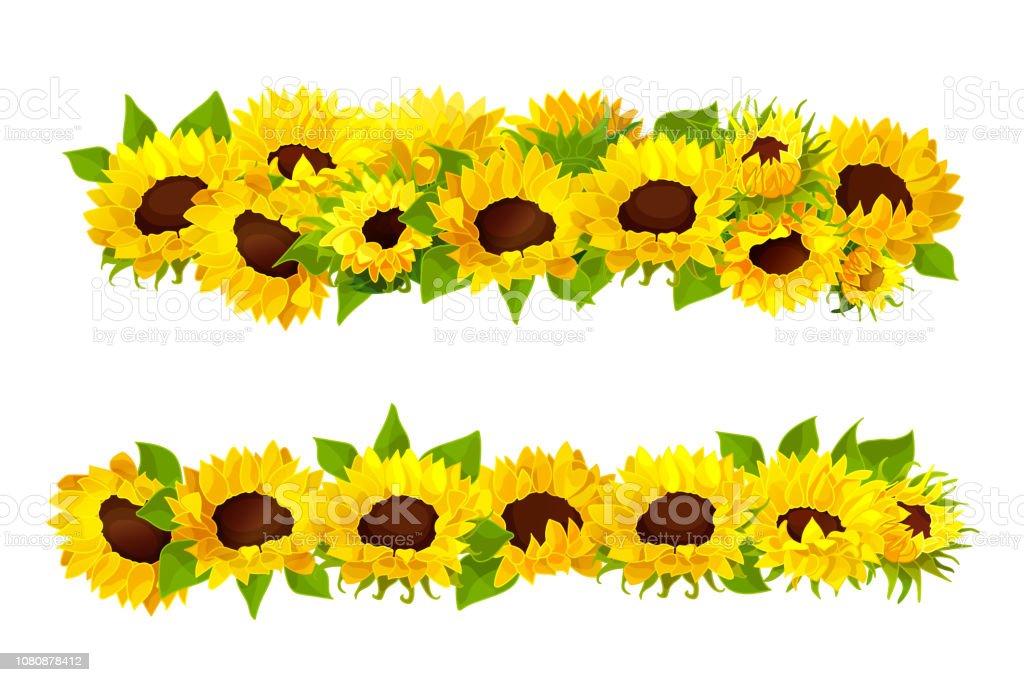 yellow sunflowers border cartoon