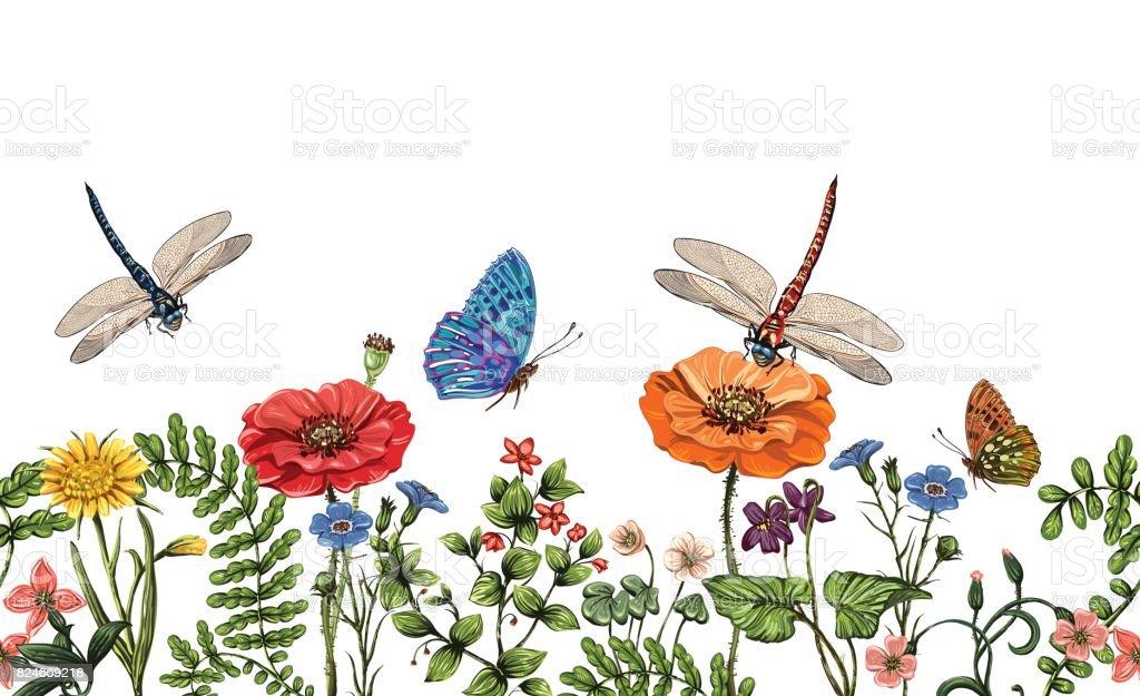 Butterfly Border Clip Art