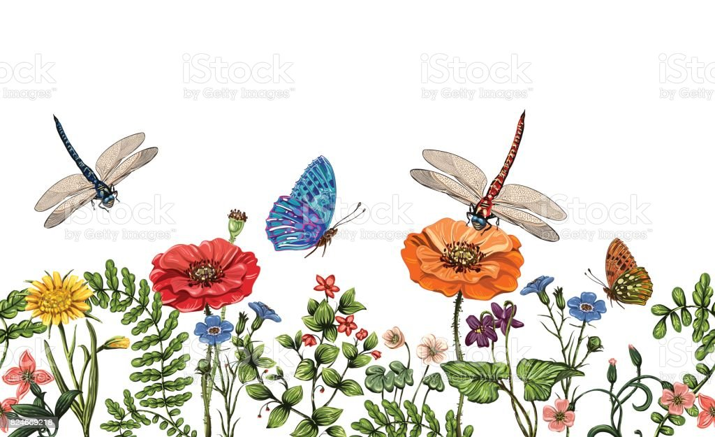 vector vertical border with dragonflies