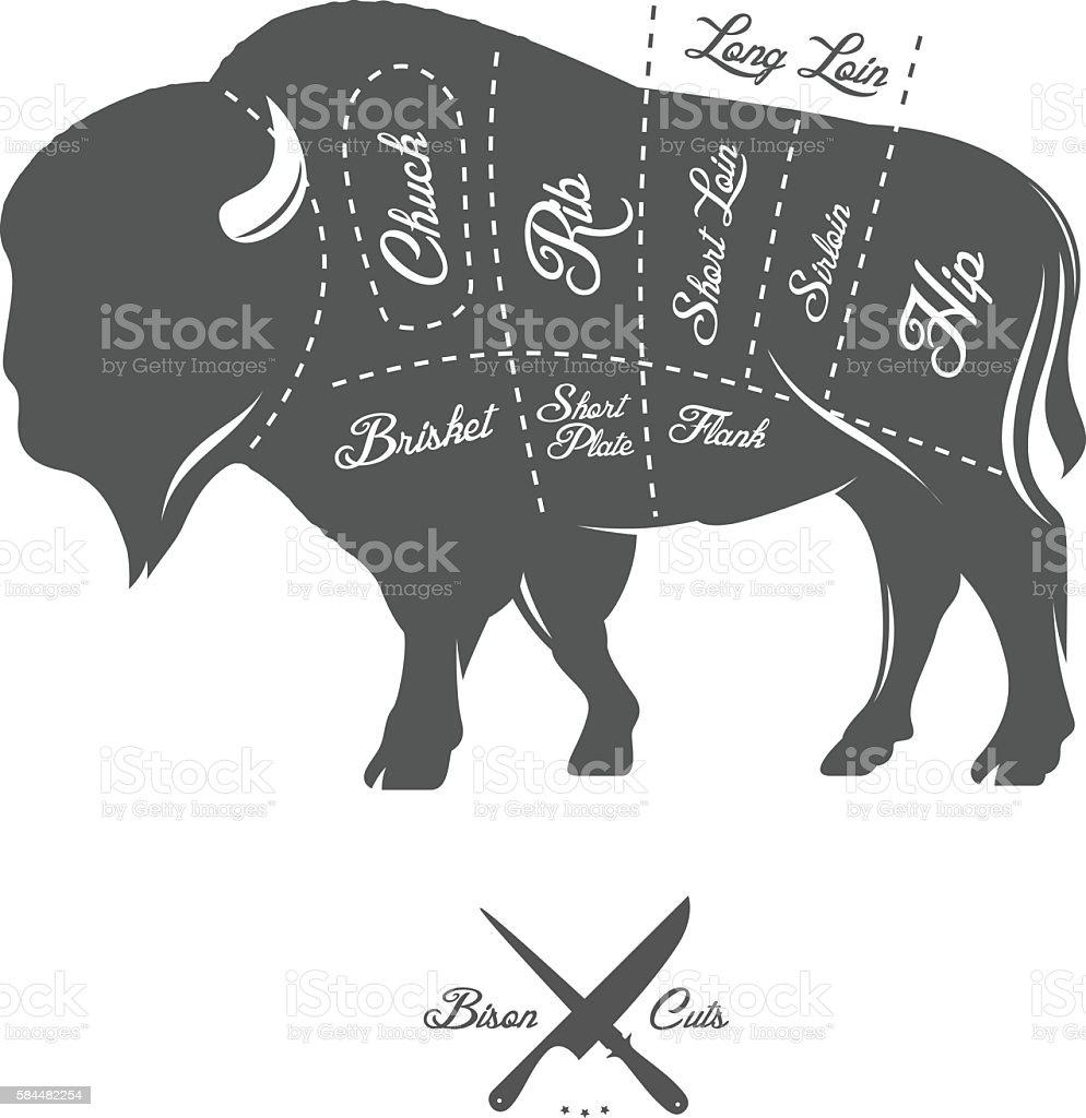 body diagram of bison wiring diagram blog body diagram of bison [ 994 x 1024 Pixel ]