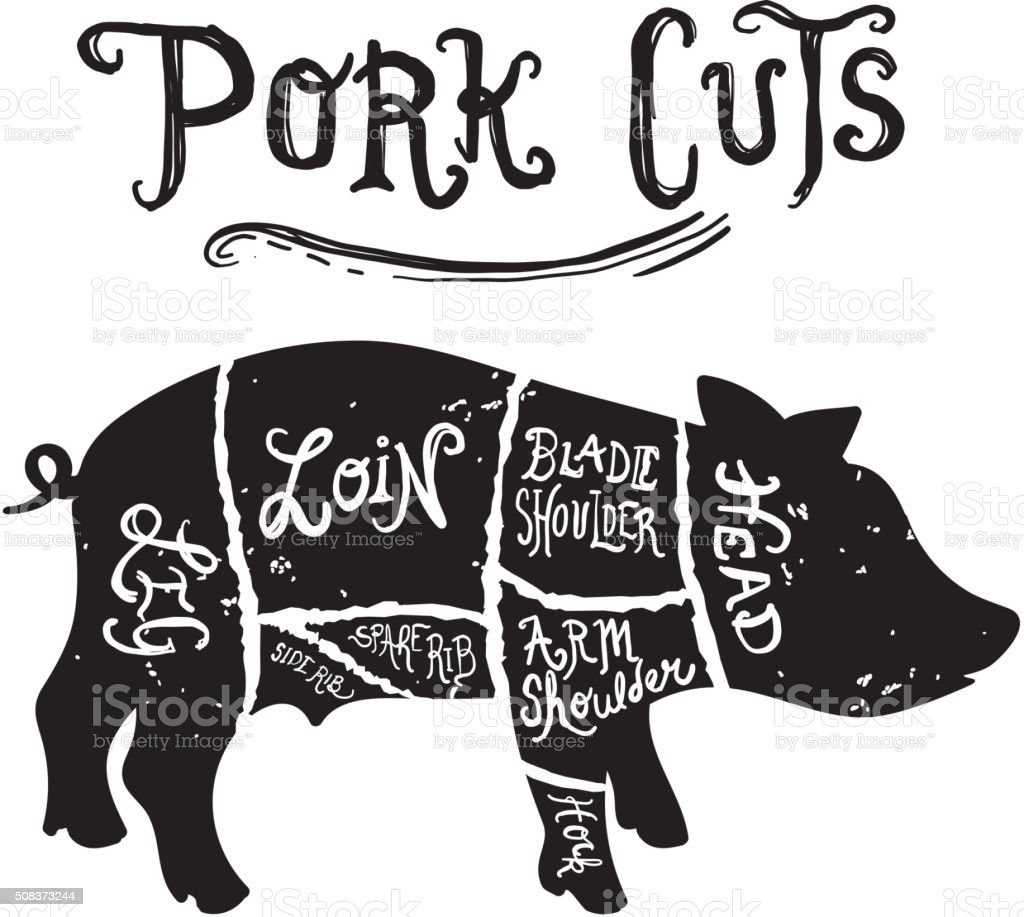 pig cuts diagram sonos play 1 wiring diagrams vintage pork butcher stock vector art more images of illustration