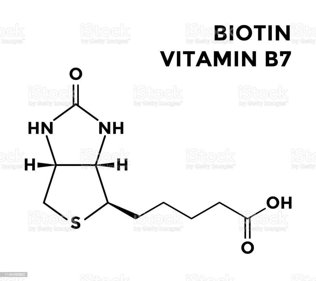 hight resolution of vitamin b7 biotin structural chemical formula royalty free vitamin b7 biotin structural chemical formula stock