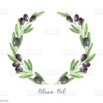 Watercolor Olive Branch Wreath Stock Illustration Download Image Now Istock