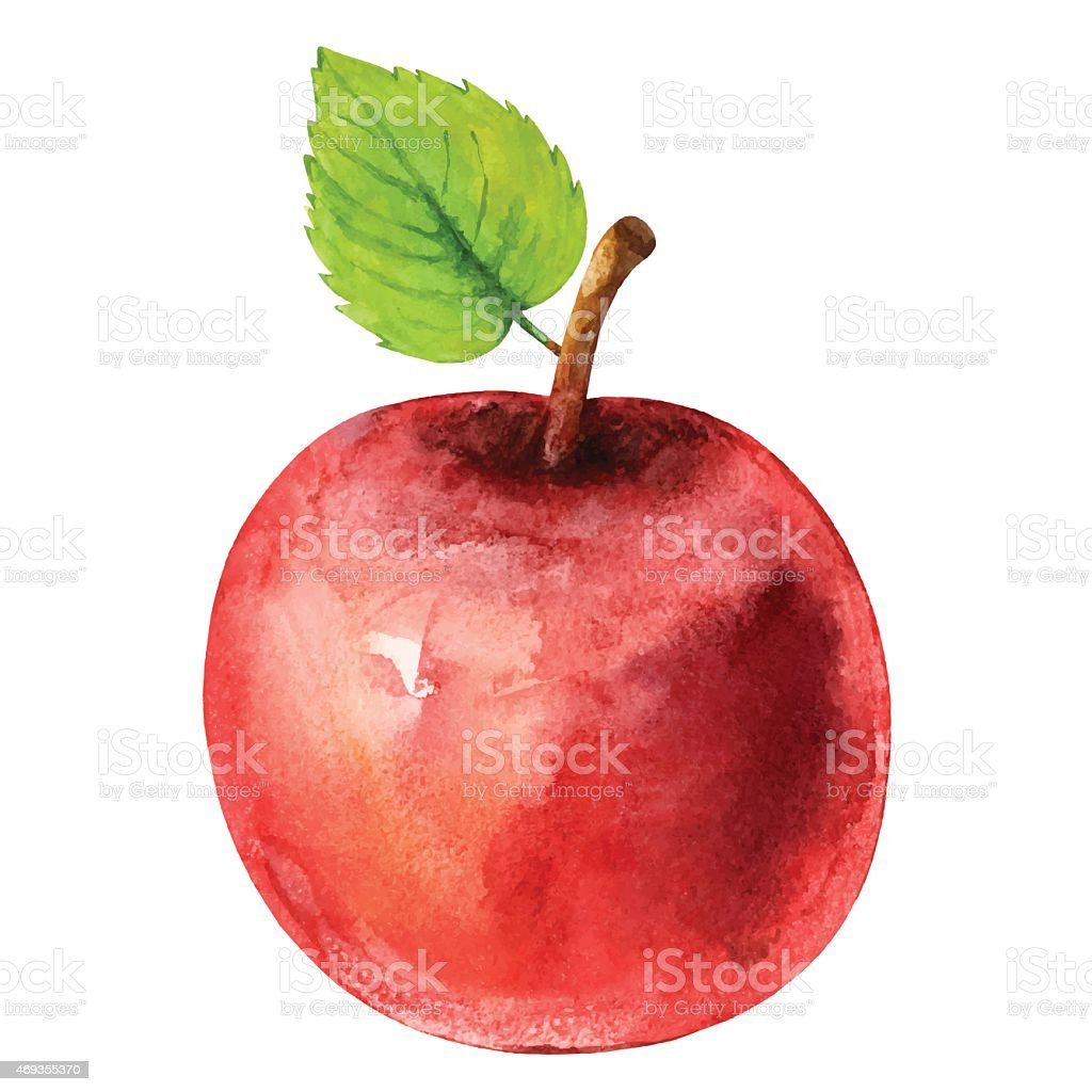 royalty free apples clip art vector