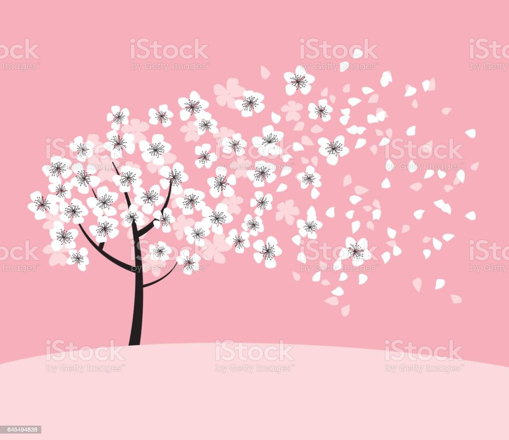 white sakura tree blossom on pink rosy background elegant naive spring floral design element for invitation card poster greetings wedding stock illustration download image now istock