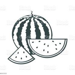 watermelon outline whole pieces cut vector fruit eating drink paint