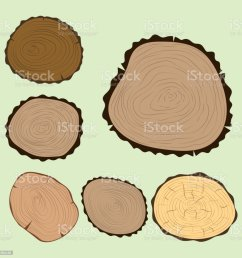 wood slice texture tree circle cut raw material set detail plant years history textured rough forest [ 1024 x 1024 Pixel ]