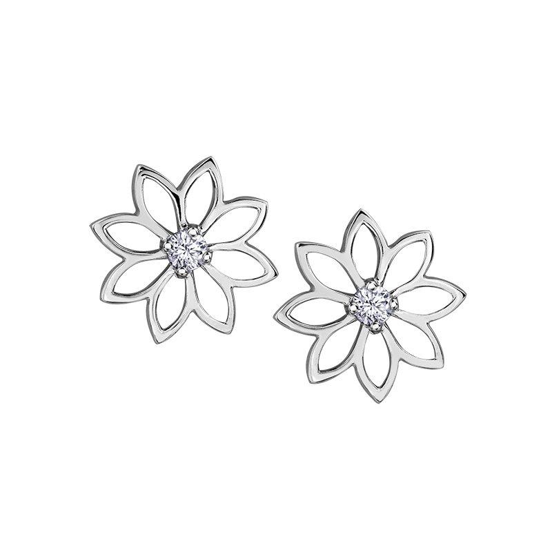 Caines Jewellers: Maple Leaf Diamonds Maple Leaf Diamonds
