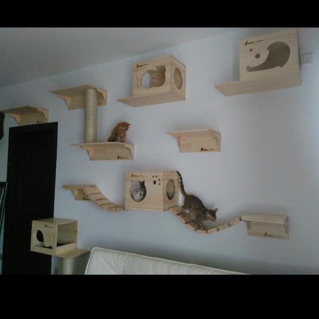 Custom Wall Mount Cat Furniture Wall Systems For Cats Cat