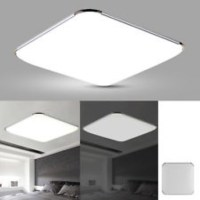 [INSTOCK] Modern LED Apple Ceiling light Square LED ...