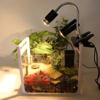 UVA + UVB Basking Lamp | Terrapins, Turtles and Reptiles ...