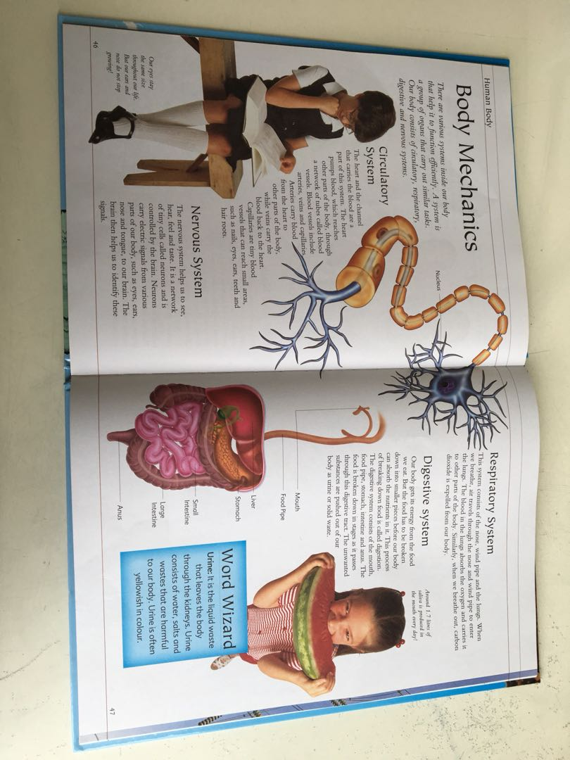 medium resolution of usborne children s illustrated encyclopedia books stationery children s books on carousell