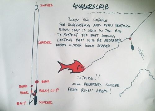 small resolution of shark rig diagram