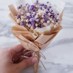 Mini Dried Baby Breath Bouquet Gardening Flowers Bouquets On Carousell
