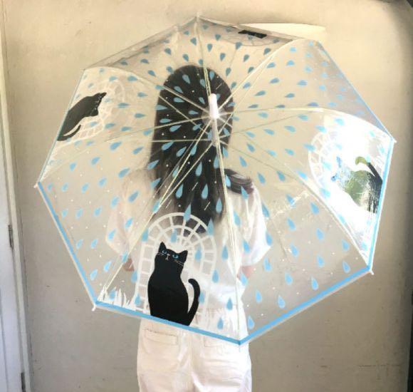 日本 Happy Umbrella 透明晴雨傘, 其他, 其他 - Carousell