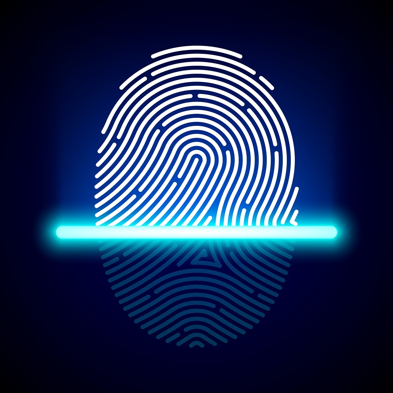 why fingerprints scanners in