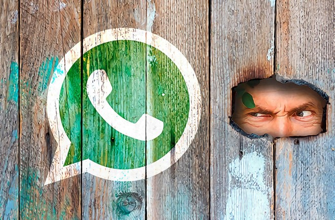Why you should update WhatsApp right away