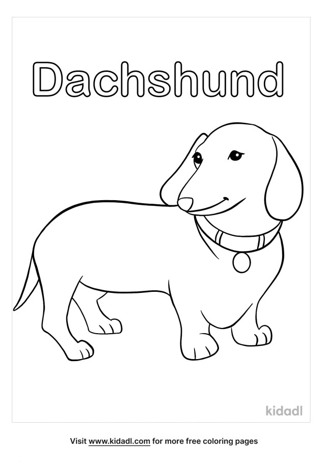Dachshund Coloring Pages  Free Animals Coloring Pages  Kidadl