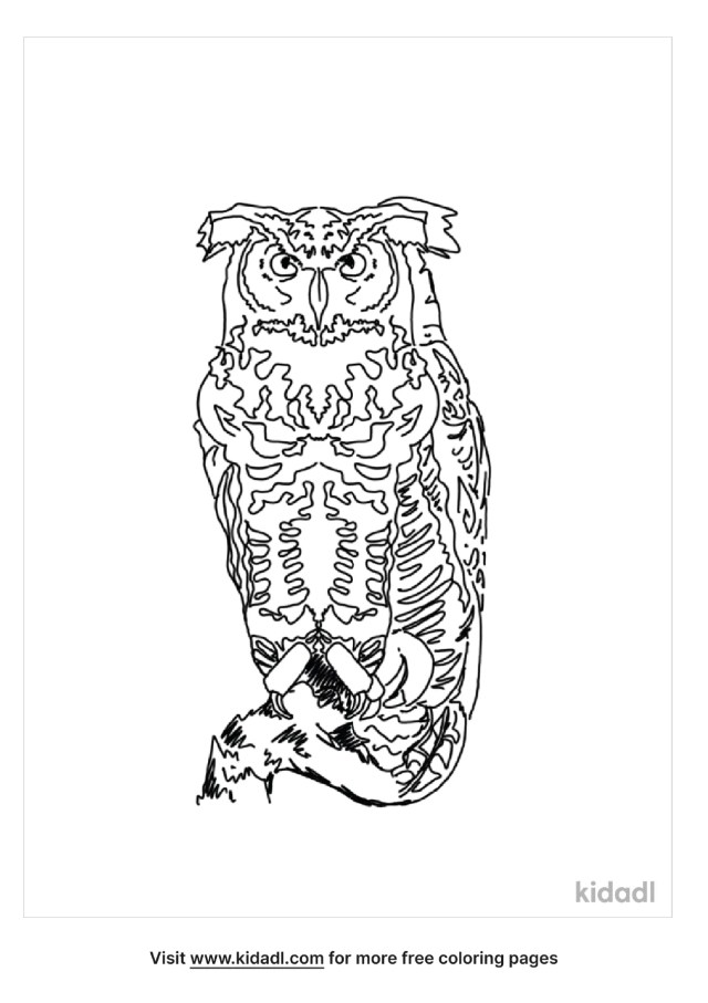 Great Horned Owl Coloring Pages  Free Birds Coloring Pages  Kidadl
