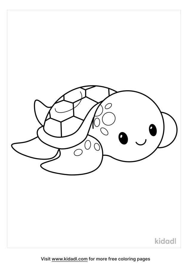 Frilled Coquette Coloring Pages  Free Animals Coloring Pages  Kidadl
