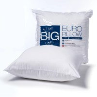 The Big One Euro Pillow