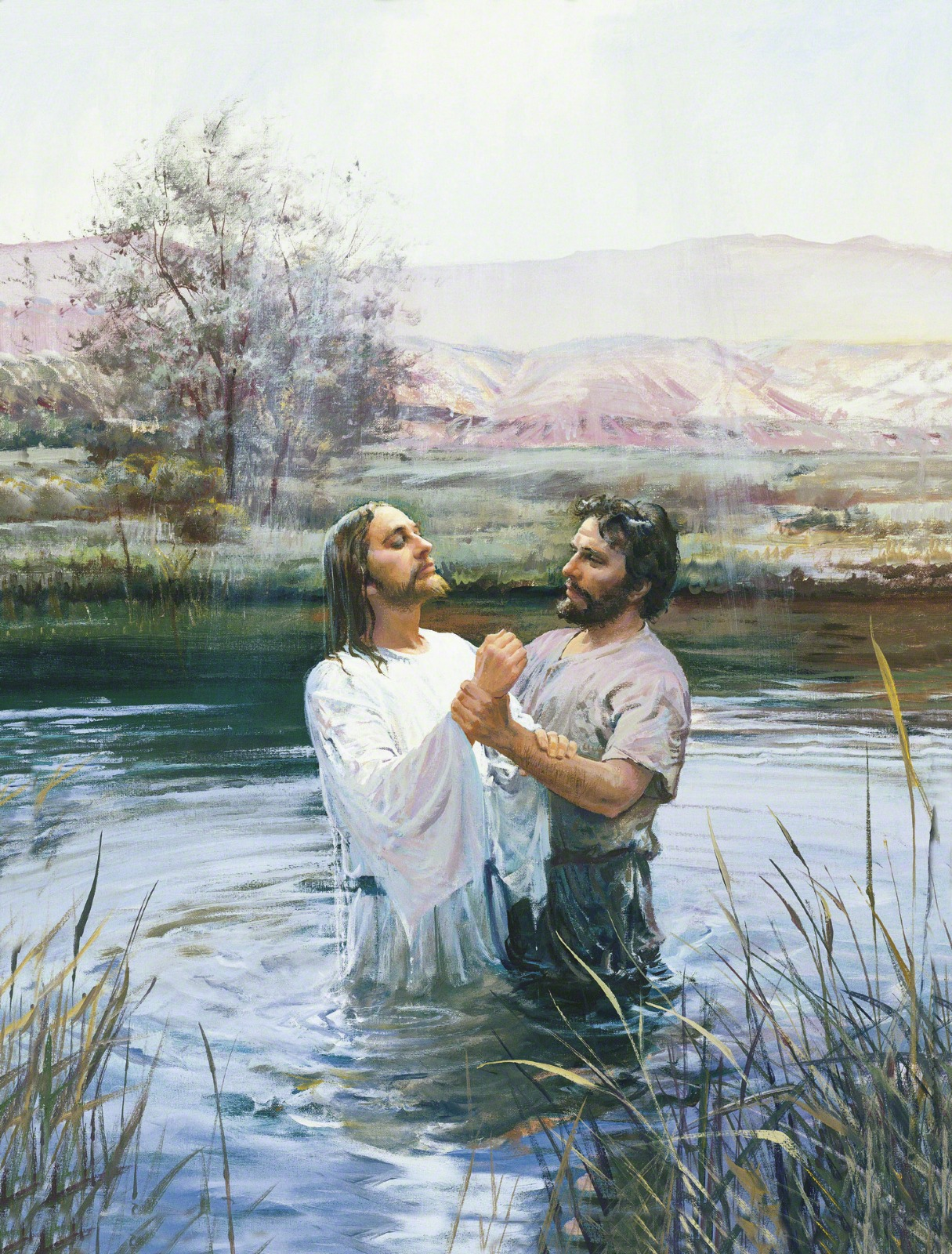 hight resolution of diagram of water baptism