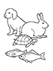 Nursery Manual (Primary Symbols for Lessons 1-30)