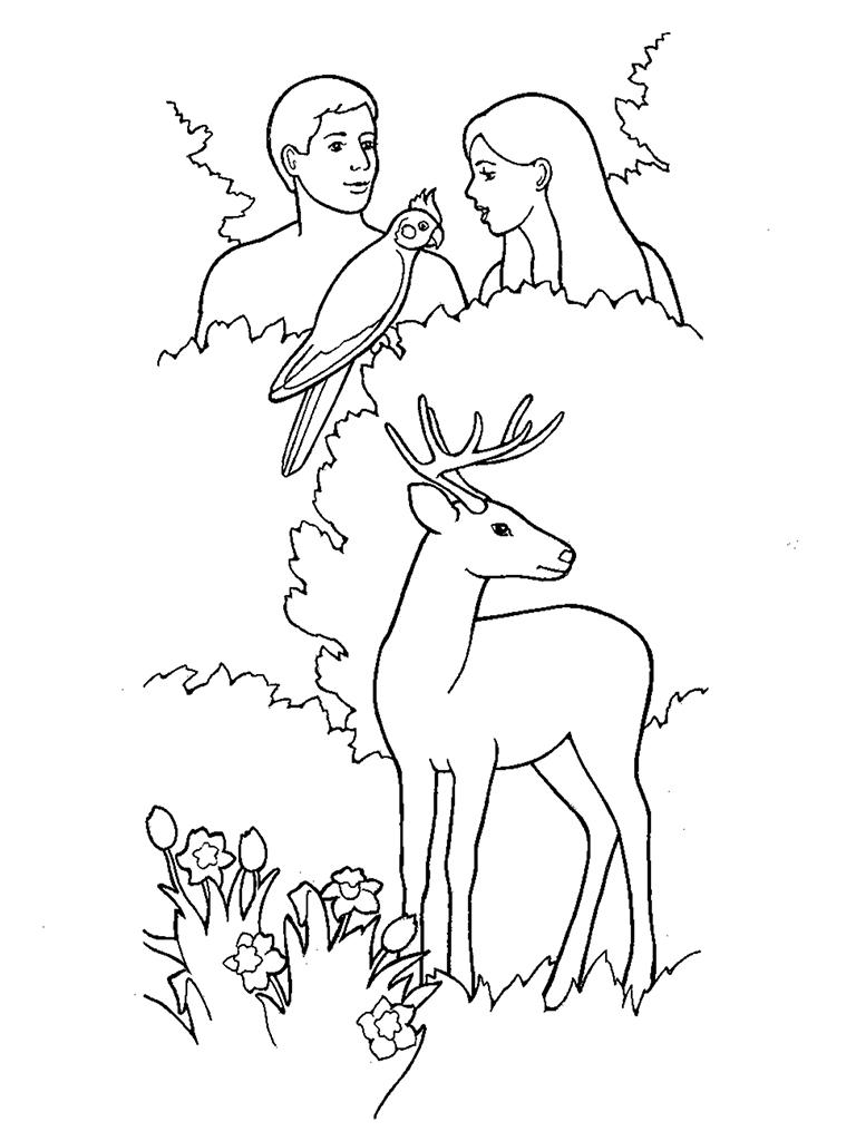 Creation: Adam and Eve In the Garden of Eden
