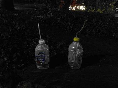 meth-bottles.jpg