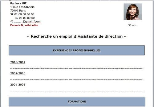 model de cv simple a remplir