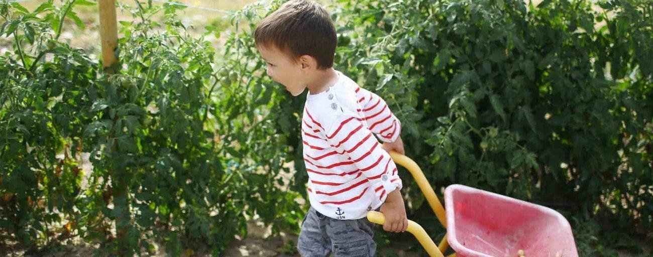 jardinage pour enfants comment faire