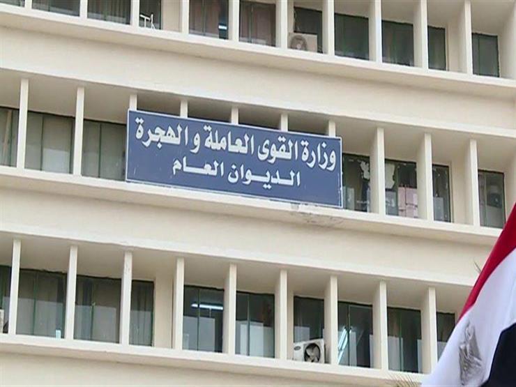 الهجرة تنظم زيارات للمستثمرين المصريين بالخارج المشاركين ب