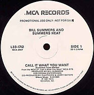 """17. """"Call It What You Want"""" - Bill Summers & Summers Heat"""