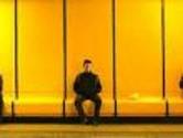 The Yellow Bloke
