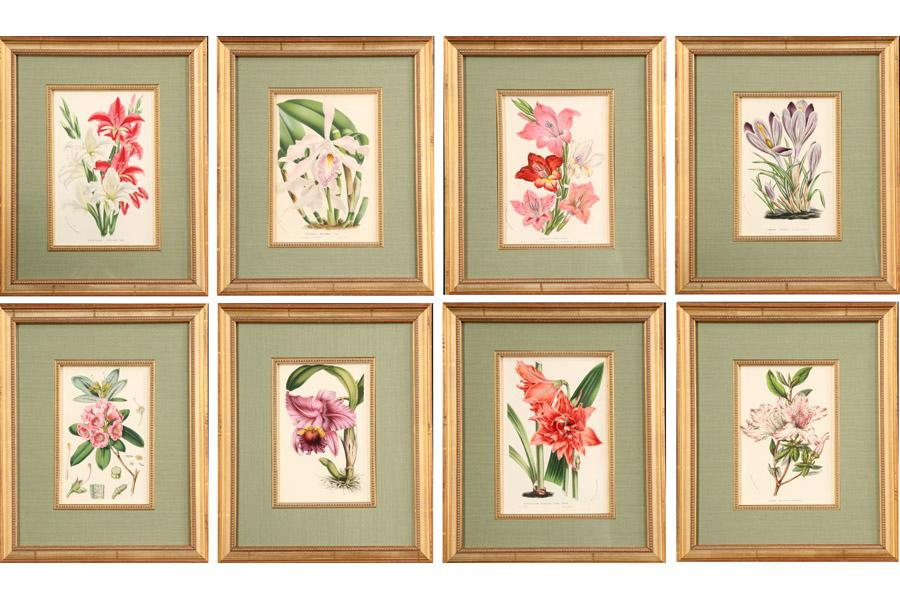 Art Framed Sets Botanical