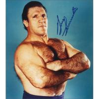 1Wrestling.com's Bill Apter's Plea to Bruno Sammartino to Accept Induction into WWE Hall of Fame