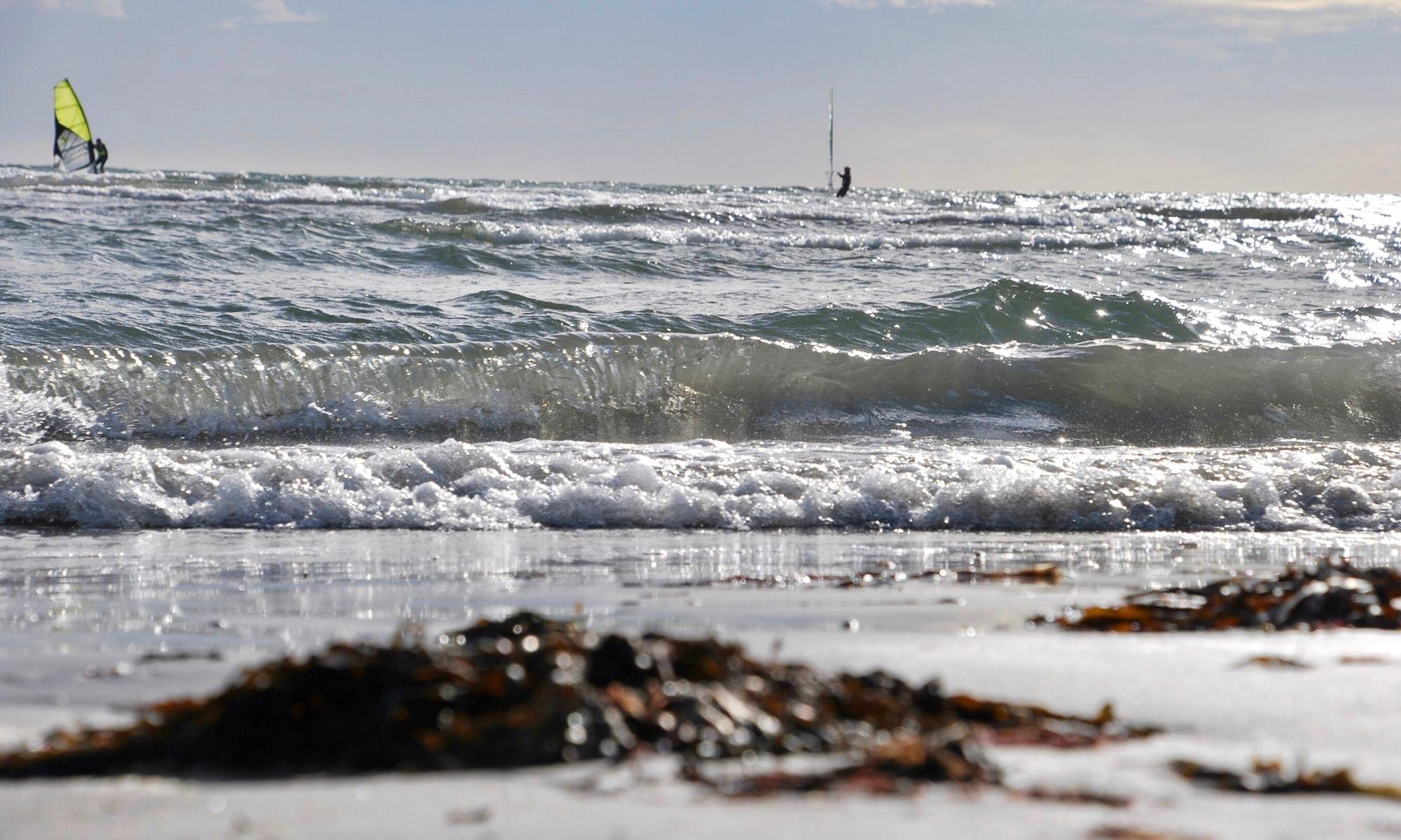 gå vindsurfingkurs i apelviken