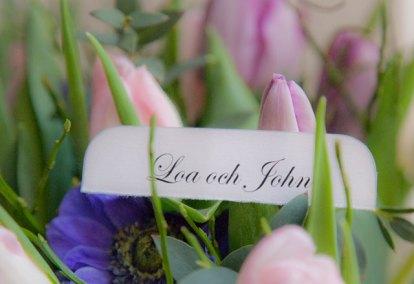 bröllopsdag tre månader 140313 tulpaner