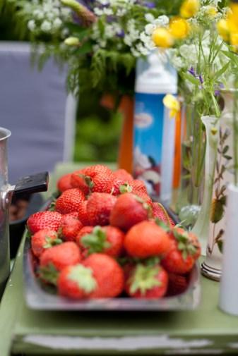 jordgubbarIMG_7055