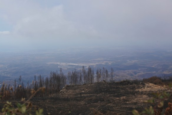 brandutsikt-portugal